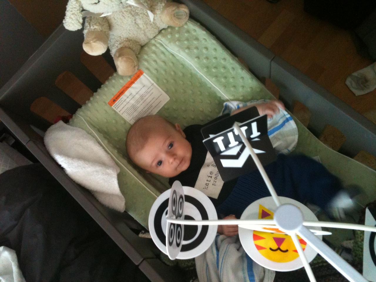 wimmer ferguson infant stim mobile instructions